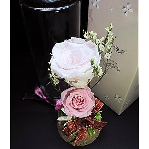 JR conserve di fiori Champagne&Soft (Conserve Gift Box)
