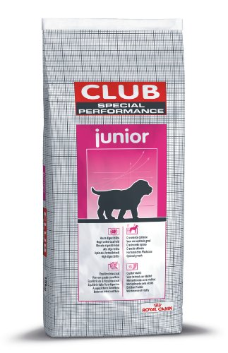 Royal Canin RCClubSpecialPerformanceJunior15kg, 1er Pack (1 x 15 kg Packung)