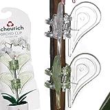 Scheurich 50183-INDOOR Orchideenclip, 17,5 x 6 x 1 cm, grün transparent