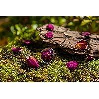 Anillo de pétalos de rosa - Joya con flores secas naturales - Anillo ajustable boho vintage botánico - - Regalos originales para mujer - Aniversario - Regalo Día de la Madre - Sant Jordi