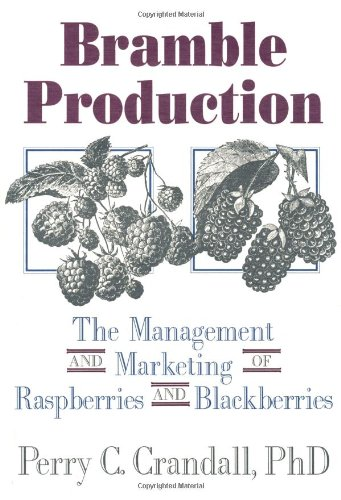 bramble-production-marketing-and-management-of-raspberries-and-blackberries
