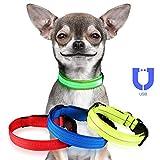 Jinzhao Hundehalsband-LED Hundehalsband mit wiederaufladbarem USB-Licht, 3 Leucht- / Reflektionsmodi-Strings, Verstellbarer D-Ring mit Schnalle im Freien (Grün 16.5''-24.4''Neck L)