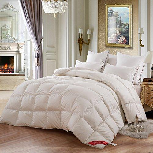 Wintersteppdecke Warm und dick Single Double Air Student weiß Winter Quilt A+ (größe : 200 * 230cm) Down Quilt Shop
