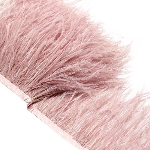 Ultnice Fransenborte, Federimitat, 2m, Fransen an Satinband, als dekoratives Element für selbstgenähte Kleider oder Kostüme (Rosa)
