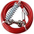 AB Tools 2 X Extra Strong Dog Stake Out SpikeS & 2X10ft Weather Resistant Tie-Out Cable from AB Tools
