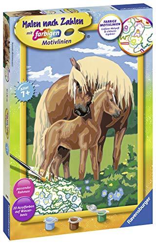 Ravensburger Liebevolle Pferde Kit de Pintura por números - Libros y páginas para Colorear (Kit de Pintura por números, 1 páginas, Niño, Niño/niña, 7 año(s), 31 cm)