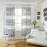 MagiDeal 100x250cm Modern Transparent Fenstervorhang Voile Vorhang Drapier für Jalousie Wohnzimmer Haus Fenster Balkon Dekoration - Weiß Mit Perlen, 100x250cm
