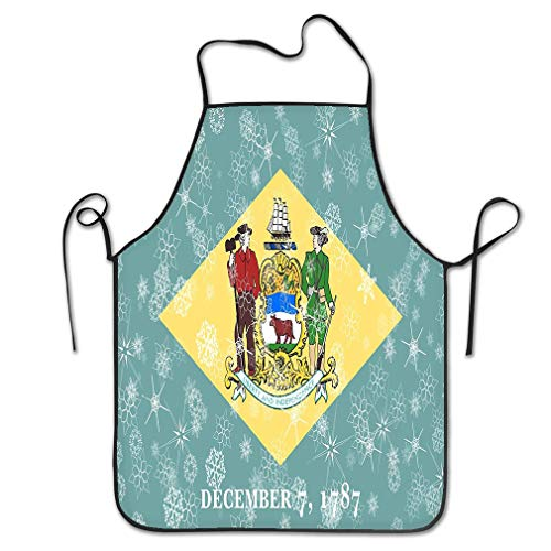 zexuandiy Aprons Bib for Kitchen Indoor Restaurant Cleaning Serving 20.4 * 28.3 inch Delaware Winter Snowflakes Flag United States America Delaware Winter Snowflakes Flag United States -