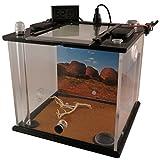 Antlife AMEISENFARM | Premiummodel Uluru (Größe M)