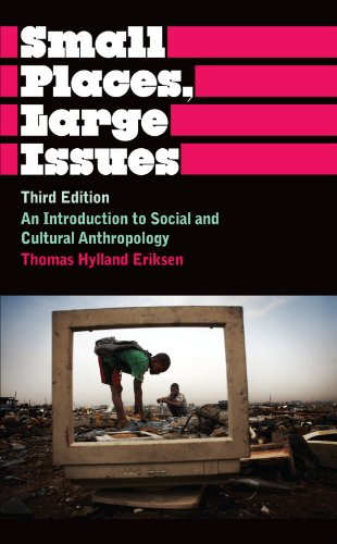 Small Places, Large Issues Third Edition: An Introduction to Social and Cultural Anthropology (Anthropology, Culture and Society)