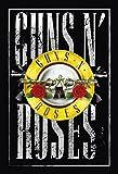Guns N Roses 80er rock band hochformat schild aus blech, metal sign, deko schild