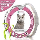 Beste Band Pulci e zecche collare cane collare antipulci pulci e zecche collare per gatti regolabile impermeabile Proteggere per gatti 35 cm