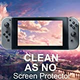 Tempered Glass Screen Protector for Nintendo Switch 2017 (2-Pack)