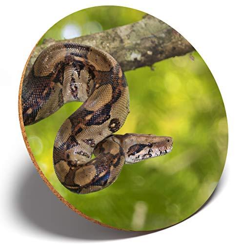 Untersetzer #3120 Wilde Boa Constrictor Snake, rund, für Küche, Student, Kinder, Geschenk - Gedruckt Von Boa