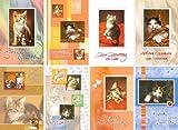 100 Geburtstagskarten Katzen Klappkarten mit 100 Umschlägen Grußkarten Glückwunschkarten Geburtstag 51-6120