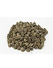 SK ORGANIC Wingless Moringa Seeds PKM1 (seeds without wings) 500 gms (More than 2000 seeds)