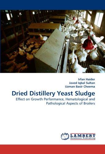 Dried Distillery Yeast Sludge