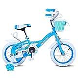 DACHUI bambini le automobili, i ragazzi e le ragazze baby bike, biciclette da bambino (Colore : Blu, Dimensione : 93cm)