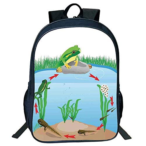 HOJJP Schultasche Stylish Unisex School Students Black Animal Decor,Life Cycle Tropic Tree Frog Presents Aquatic s Evolution in Nature,Multi Kids,
