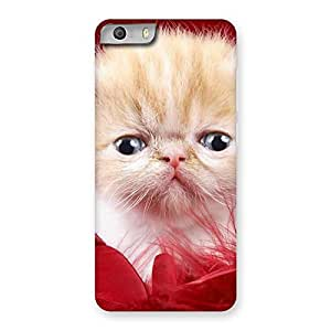 Enticing Kitty In Red Fur Back Case Cover for Micromax Canvas Knight 2
