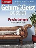 Gehirn&Geist Dossier - Psychotherapie: Was hilft wirklich?