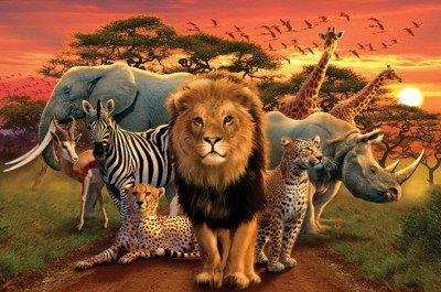 1art1® - Póster de animales de la selva (91 x 60 cm)