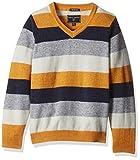 Indian Terrain Boys' Sweater (TBA16SWK04...