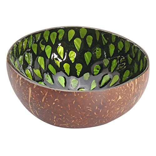 dDanke Natural Coconut Shell Bowl Dishes Mosaic Handmade Kitchen Paint Craft Home Decor