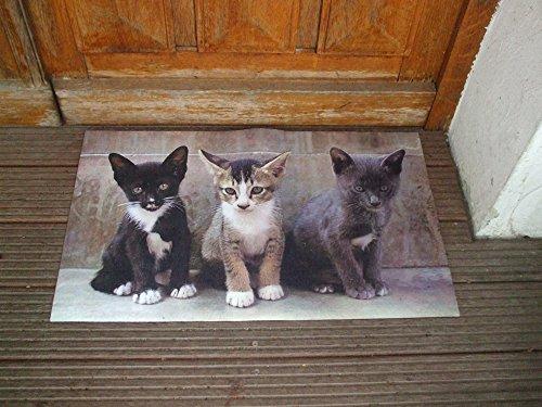 Dekorativer Fußabstreifer, Katzen, Fußmatte, Abtreter, Türmatte, 75 cm