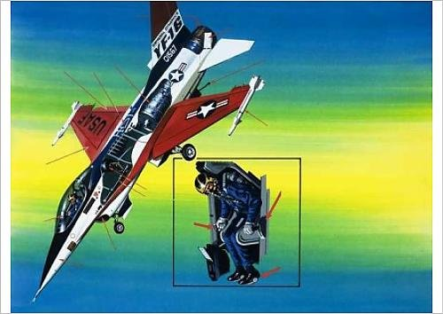 fine-art-print-of-america-s-deadly-dogfighter
