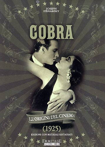 cobra-it-import