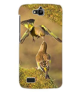 ColourCraft Love Birds Design Back Case Cover for HUAWEI HONOR HOLLY