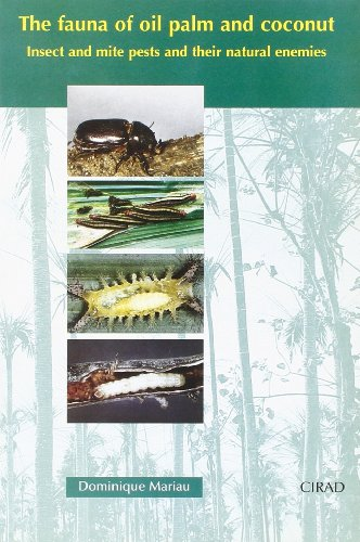 The fauna of oil palm and coconut: Insect and mite pests and their natural enemies
