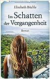 Im Schatten der Vergangenheit: Roman - Elisabeth Büchle