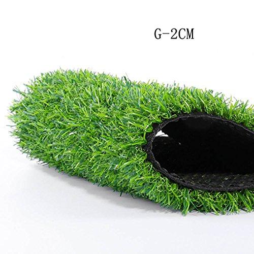 WENZHE-Artificiales sintético plástico Grass Césped Artificial Alfombra Hierba Artificial Alta Densidad Barato 2 Metros De Ancho, 5 Tipos De Grosor, La Longitud Se Puede Personalizar. Césped ( Color : G , Tamaño : 2*2m )