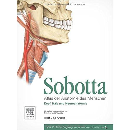 PDF] Sobotta - Atlas der Anatomie des Menschen Teil 3: Kopf - Hals ...