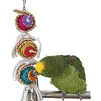 Stockton Bird Jouet à mâcher pour Perroquet Ara Gris du Gabon Amazones Conure Perruche calopsitte Inséparable cacatoès Amazon Cage Jouet
