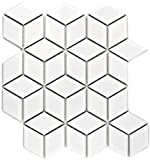 Mosaik Fliese Keramik weiß 3D Würfel weiß glänzend für WAND BAD WC DUSCHE KÜCHE FLIESENSPIEGEL THEKENVERKLEIDUNG BADEWANNENVERKLEIDUNG Mosaikmatte Mosaikplatte