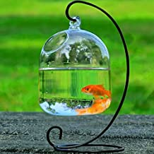 Bolange Jarrón de Cristal Transparente Colgante Que cuelga el florero decoración de Acuario de Acuario de