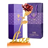 INTERNATIONAL GIFT Valentine Gift Red Rose 25 cm with Love Stand and Beautiful Carry Bag for Valentine Gift, Mother/Father Day,Wedding Gift, Birthday Gift