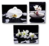 3 er Set Wandbild blühende Orchidee auf Stein je 30cm x 40cm Leinenbild Feng Shui