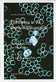 Einführung in die Dunkelfelddiagnostik. Die Untersuchung des Nativblutes nach Prof. Dr. Günther Enderlein - Cornelia Schwerdtle