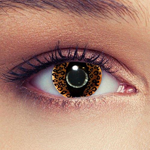 taktlinsen mit Leoparden Muster für Karneval oder Halloween Kostüm Farblinsen + gratis Kontaktlinsenbehälter (innerhalb Dt.) (Leopard Halloween-kostüm-muster)
