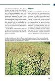 Pflanzliche Notnahrung: Survivalwissen für Extremsituationen - 13