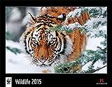 WWF Wildlife 2015