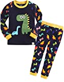 Vaenait Baby Kinder Jungen Nachtwaesche Schlafanzug-Top Bottom 2 Stueck Set Buddy Dino XL