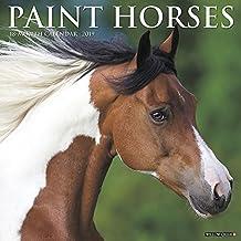 Paint Horses 2019 Calendar