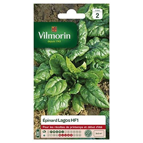Vilmorin - Sachet graines Epinard Lagos HF1
