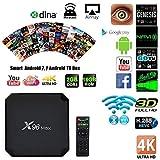 SAWEY Android 8.1 TV Box X96 Max TV-Gerät Top-Box S905W Netzwerk-Player 4G RAM 64G ROM Android 8.1 HD 4k Player Für Heimkino Spiele Spielen (1000 Meter Netzwerk-Ethernet)