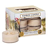 YANKEE CANDLE 1324489 Classic Tea Lights Wild Sea Grass Kerzen